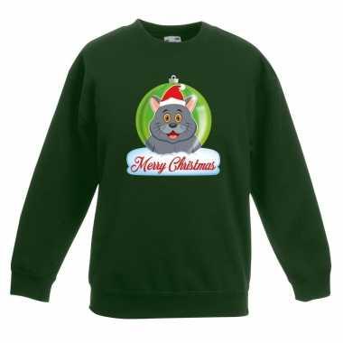 Kersttrui merry christmas grijze kat / poes kerstbal groen kinde